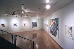 02.-Zahra-Nazari-Deconstructing-Scapes-Installation-2013-Hartnett-Gallery-University-of-Rochester-NY
